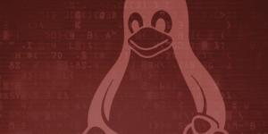IBM: Кибератаки на Linux-системы госорганов России заметно участятся