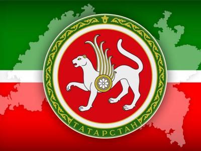 В Волжском хакер пытался взломать официальные серверы Татарстана