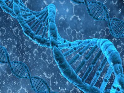 Документ о защите данных генома россиян вот-вот внесут в правительство