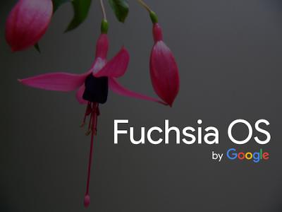Эксперты АНБ проанализировали безопасность ОС Google Fuchsia