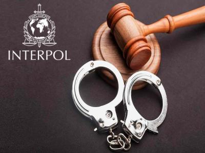 Интерпол арестовал 585 граждан стран АТР за финансовые киберпреступления