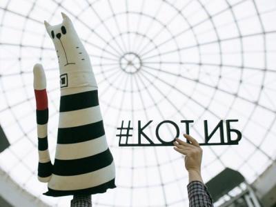 Кот ИБ, посетив 5 стран, возвращается в Екатеринбург