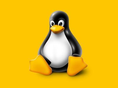 Новая уязвимость угрожает большинству дистрибутивов Linux и BSD