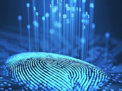 В России работают над новым механизмом идентификации в Сети