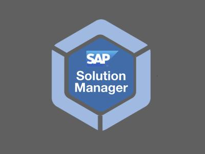 Выпуск эксплойта для 10-балльной дыры в SAP SolMan спровоцировал сканы