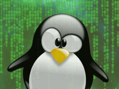 Ошибка в ядре Linux позволяет удаленно провести успешную DoS-атаку