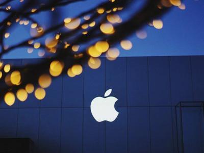 Apple раскрыла данные по запросам на передачу информации о пользователях
