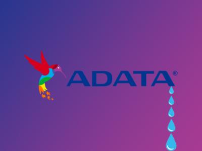Операторы Ragnar Locker слили 700 ГБ данных, украденных у ADATA