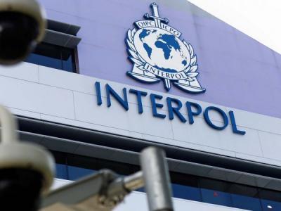 ЛК и Интерпол договорились о новом этапе совместной работы