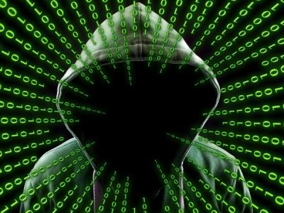 Россельхознадзор сообщил о DDoS-атаке на ВетИС