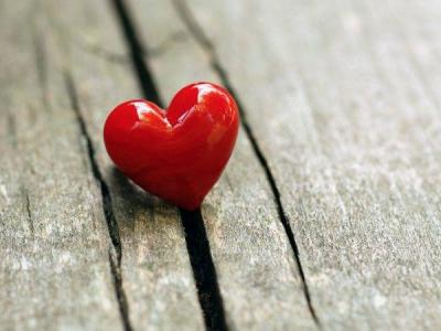 Фишеры значительно активизировались накануне Дня святого Валентина