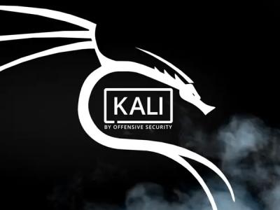 Официальная версия Kali Linux выпущена для Raspberry Pi 4