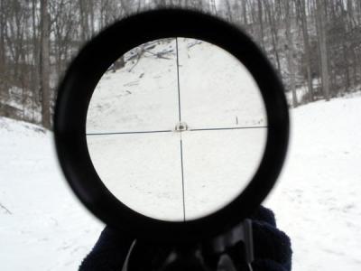 Власти США требуют у Apple и Google данные 10 тыс. владельцев оружия