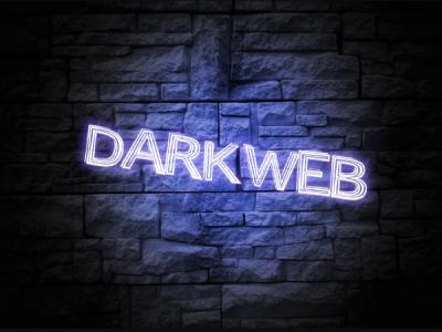 Хакер KingNull слил базу данных крупнейшего хостера дарквеба