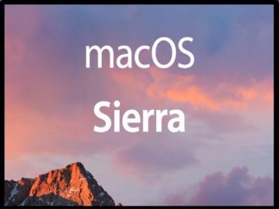 macOS High Sierra отображает ваш пароль вместо подсказки к нему