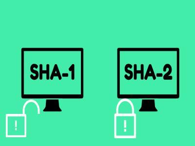 Symantec: Киберпреступники все чаще используют SHA-2-сертификаты
