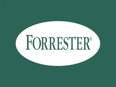 Исследовательскую фирму Forrester взломал неизвестный хакер