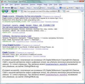 google_crack.jpg