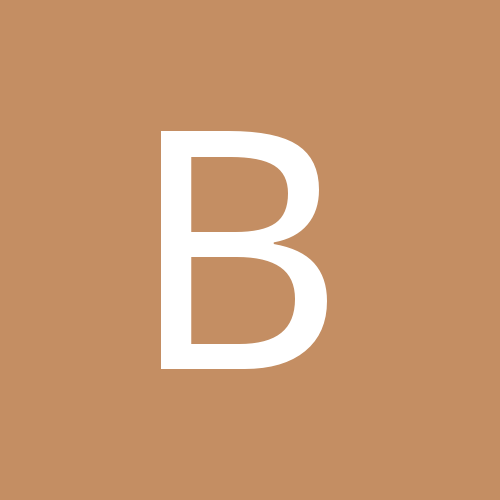 bigbrain